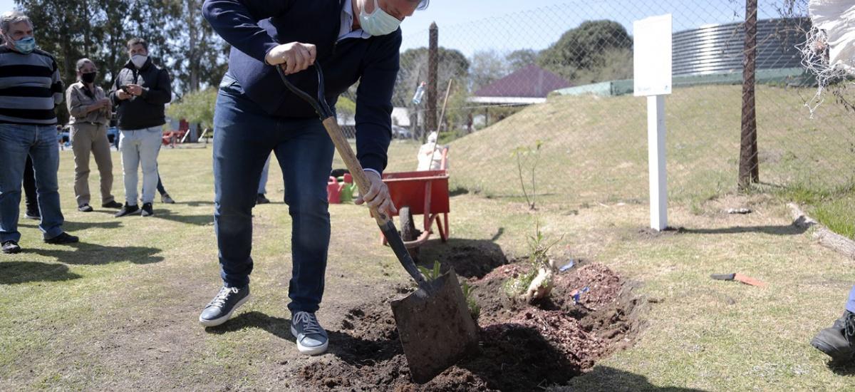 Cascallares recorrió obras y participó de jornada de forestación en Ministro Rivadavia