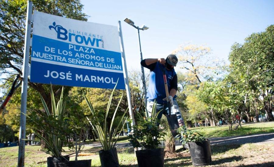 El Municipio avanza con la plantación de miles de árboles en Alte Brown
