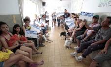 Alte Brown, primer municipio no eutanásico, bate record de 300.000 castraciones  de perros y gatos